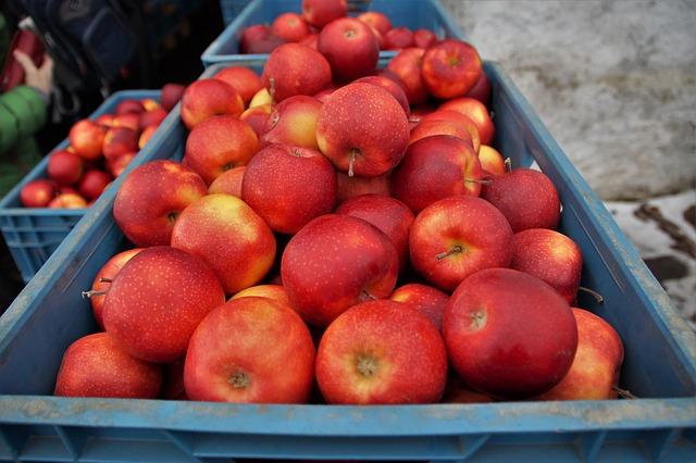 jablka v přepravkách