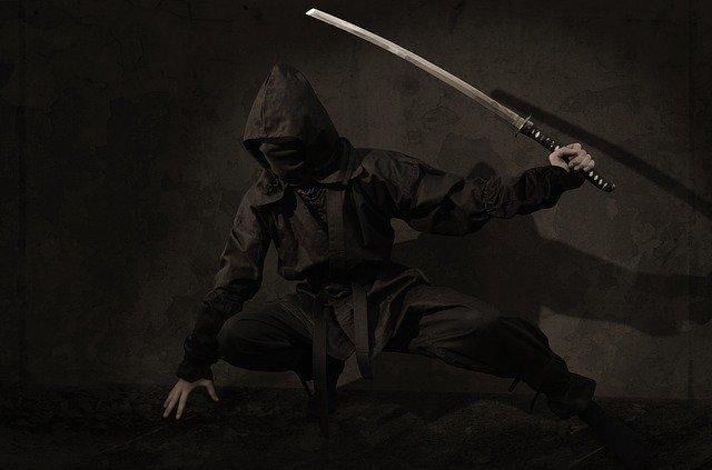 Japonský bojovník