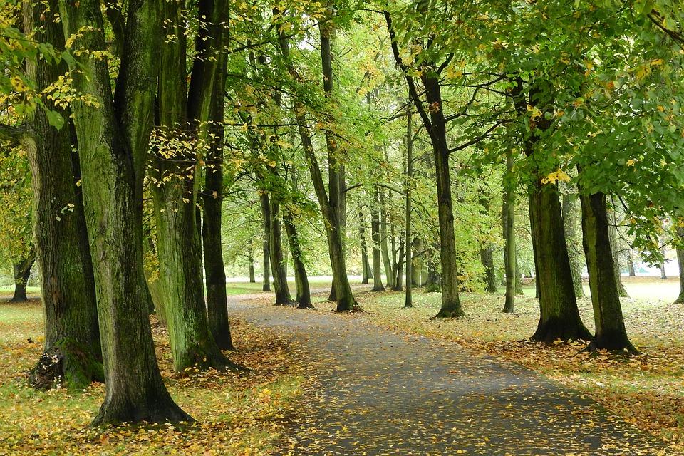 park v Českých Budějovicích